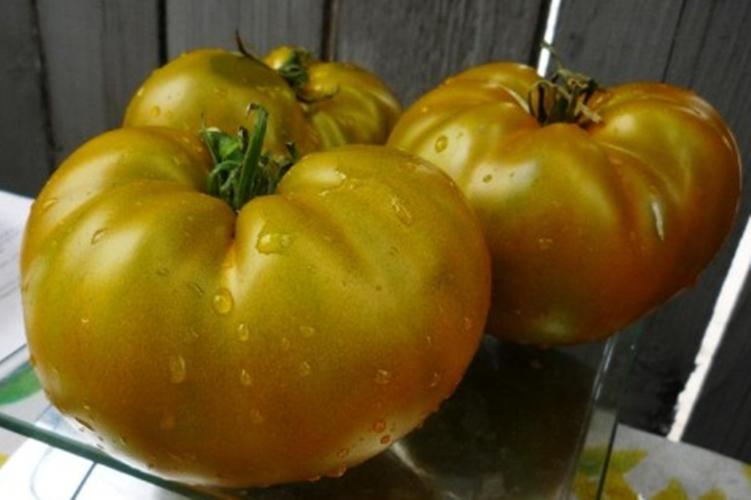 black vernissage tomate
